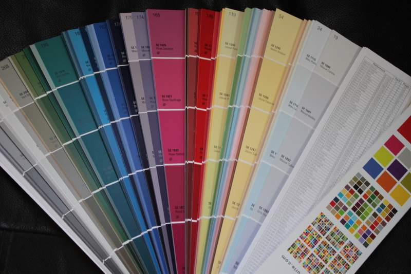 A favorite: picking out colors to spruce up the guesthouse walls! 