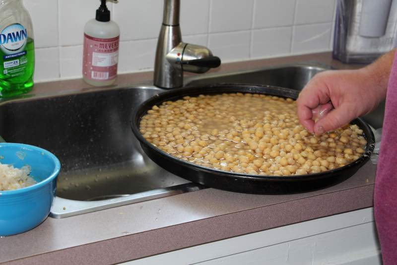 Rinsing the chickpeas.